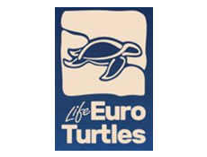 I saw a sea turtle and shared it on eTurtle!