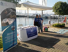 Celebrating biodiversity in Flisvos Marina