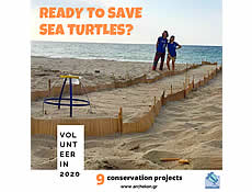 ARCHELON's 9 conservation volunteer projects for 2020